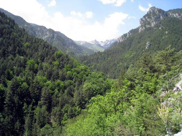 Greek Road Trip - Mount Olympus