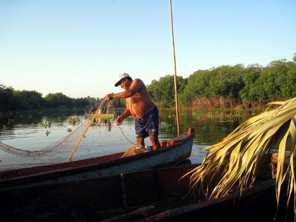 Mangle Mangrove Boat Ride Monterrico, Guatemala