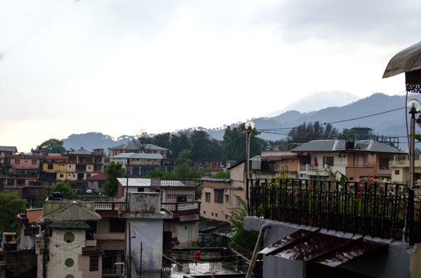 Day Trip to Palampur, India