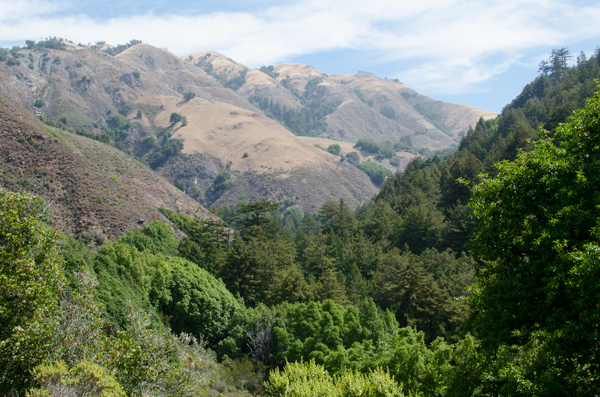 Meals for camping - view from our campground