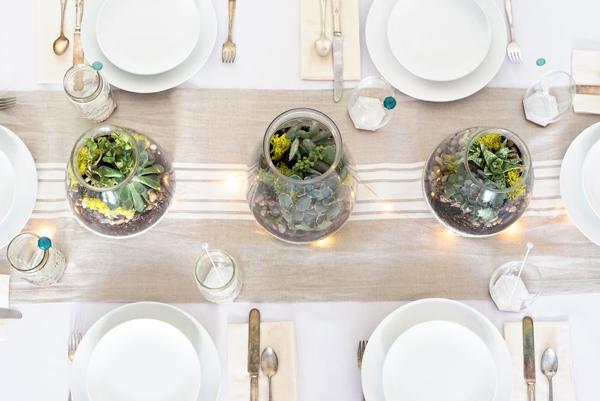 Make a drought-resistant succulent centerpiece for your next party